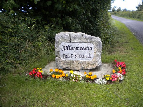 Killasmeestia Tidy Towns