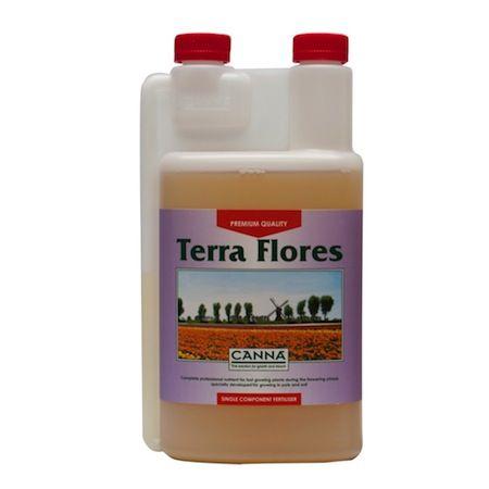 canna_terra_flores-1