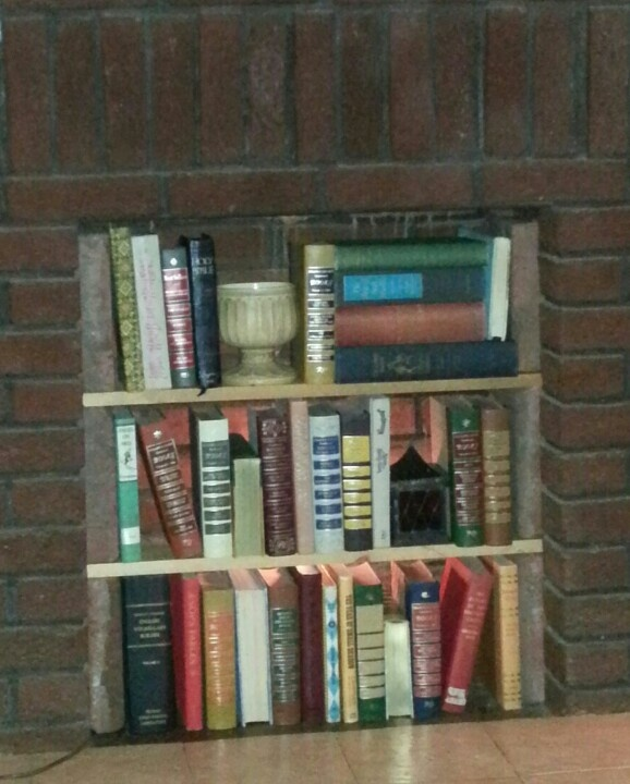 Library in unused fireplace - six bricks and two boards... very doable.