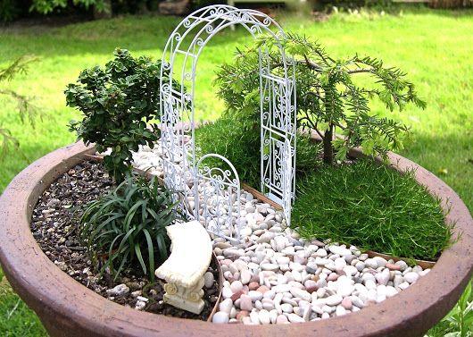 Миниатюрный сад Miniature garden