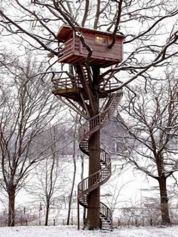 the tree house in France
