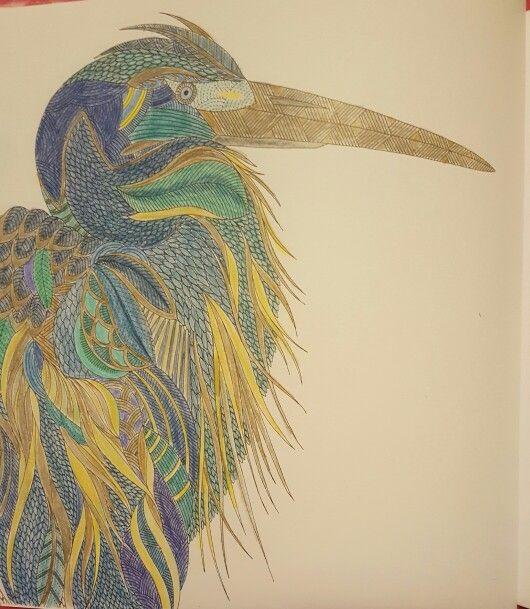 Animal Kingdom Color Me Draw By Millie Marotta KingdomColoring Book