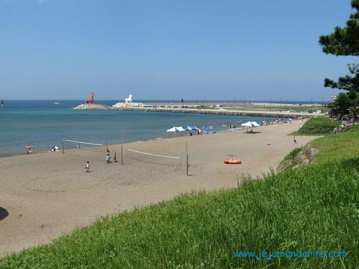 Iho teu Beach 이호테우해수욕장 - Jeju Mandarins