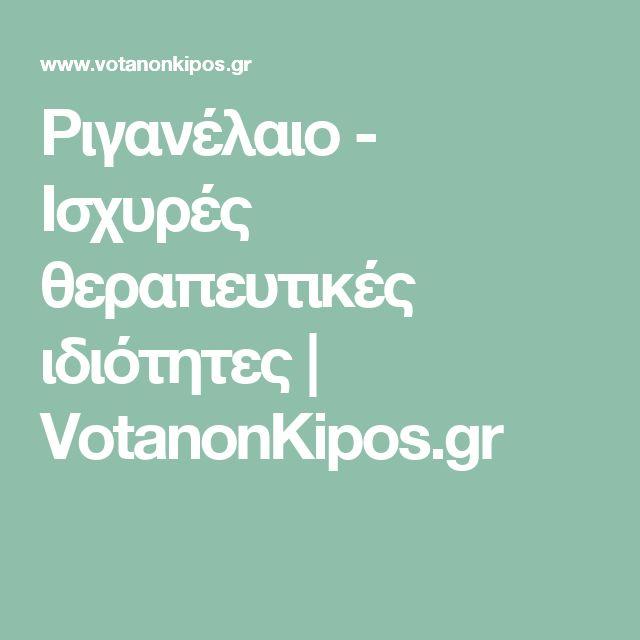Ριγανέλαιο - Ισχυρές θεραπευτικές ιδιότητες | VotanonKipos.gr