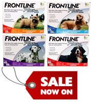 Frontline Plus is a flea and tick treatment for 8 weeks and older puppies and dogs. A monthly spot-on treatment, it kills adult fleas within 12 hours and destroys ticks and chewing lice within 48 hours. It remains active for four weeks during which it wipes out the flea life cycle and prevents re-infestations of these pests. The waterproof treatment allows bathing and swimming the pet even after application.