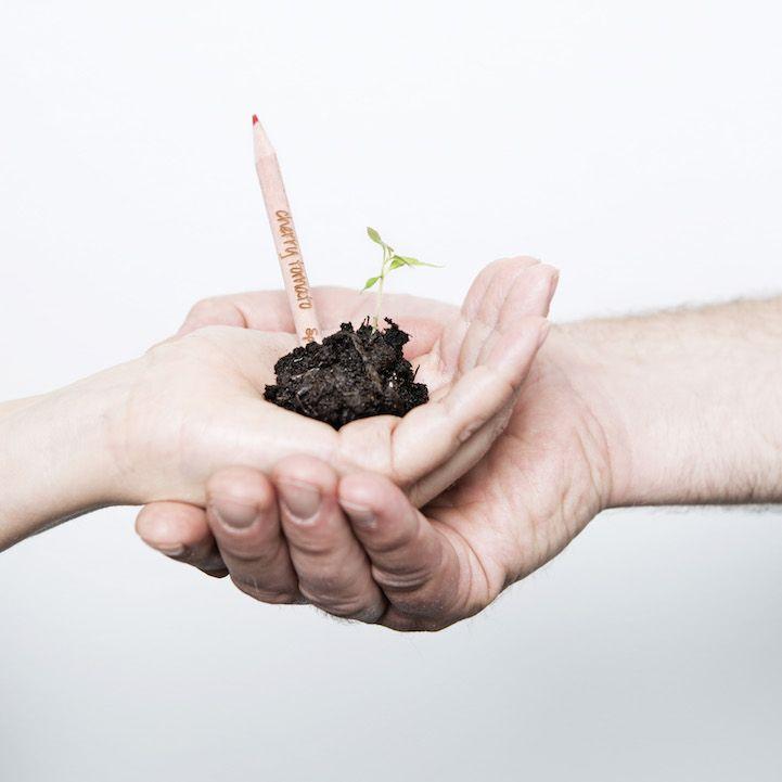 Sevgili kurşun kalem severler, aça aça küçülmüş kalemlerinizi ne yapıyorsunuz? Kullanılamayacak kadar küçülen kalemler çoğunlukla çöpü boyluyor olmalı, değil mi? Her sene yaklaşık 15 milyar kurşun kalem üretiliyor. Bunu takiben, kurşun kalem artıklarının atık oluşumunun büyük bir kısmını kapladığını söylersek elbette yanlış olmaz. 2012 yılında bir grup MIT öğrencisi, kurşun kalem atıklarını azaltmak için alternatif …