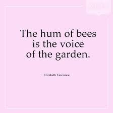 Image result for bee quotes – #Bacafleurspourl'ete #Havredepaixjardin #Jardinier…