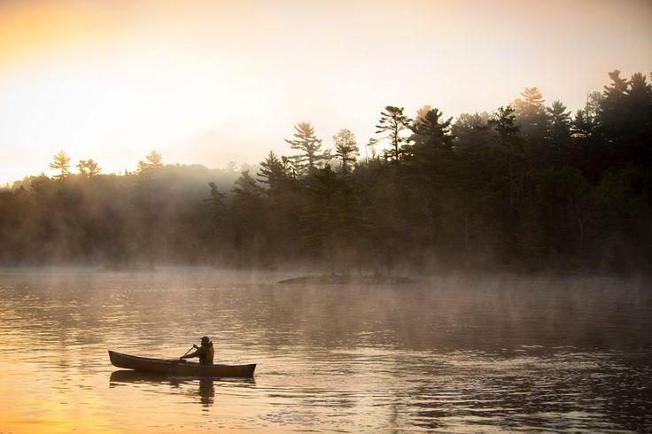 Superior National Forest, Estados Unidos - Bosques del mundo que parecen encantados