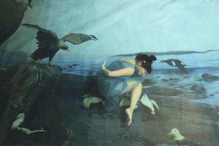 Gravity, 2011 #fineart #photography #susannamajuri #underwater