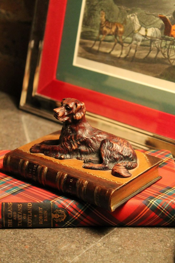 Stewart Tartan with faithful pup in the library