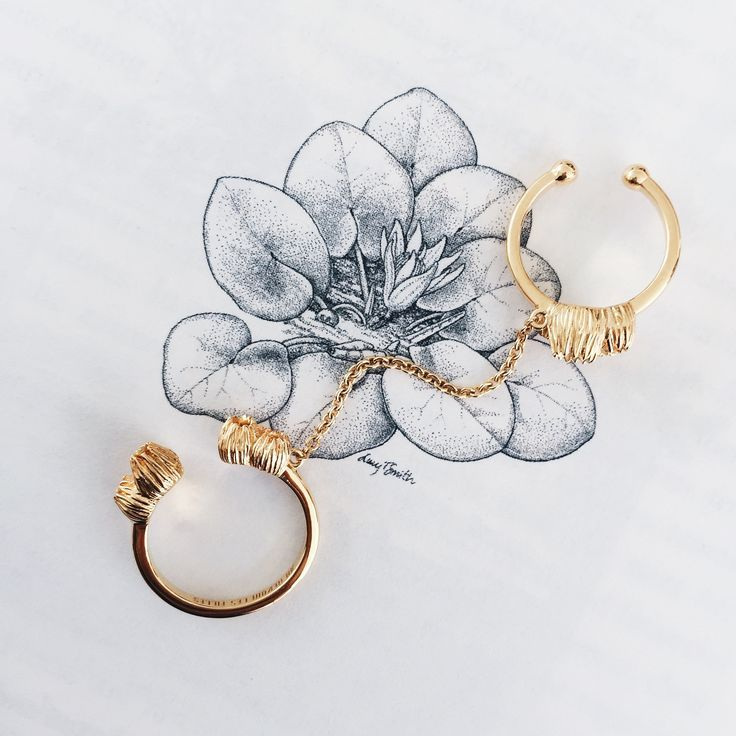 Double Chain Rings with Barnacle Blossoms | Shop Now | Modern barnacle jewellery in a double ring design joined with a fine chain | 14k gold plated sterling silver | Endless stacked rings | Au Revoir Les Filles | Shop this beautiful, modern and timeless stacking ring design now via website link