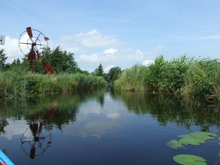 Vanuit de kano in Ossenzijl Overijssel.