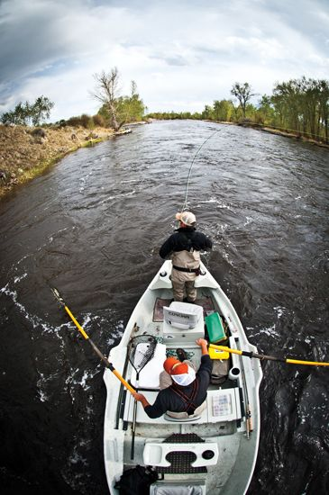 Fly Fishing from a drift boat is one of the great joys in life.