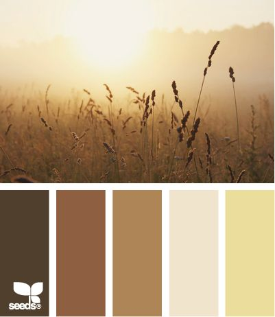 autumn mist #Color: Mists Colors, Autumn Mists, Design Seeds, Paintings Colors, Colors Combinations, Colors Palettes, Warm Brown, Colors Schemes, Colors Inspiration