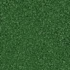 Home Depot outdoor rug--way cheaper than astroturf...Green 6 ft. x 8 ft. Artificial Grass Rug