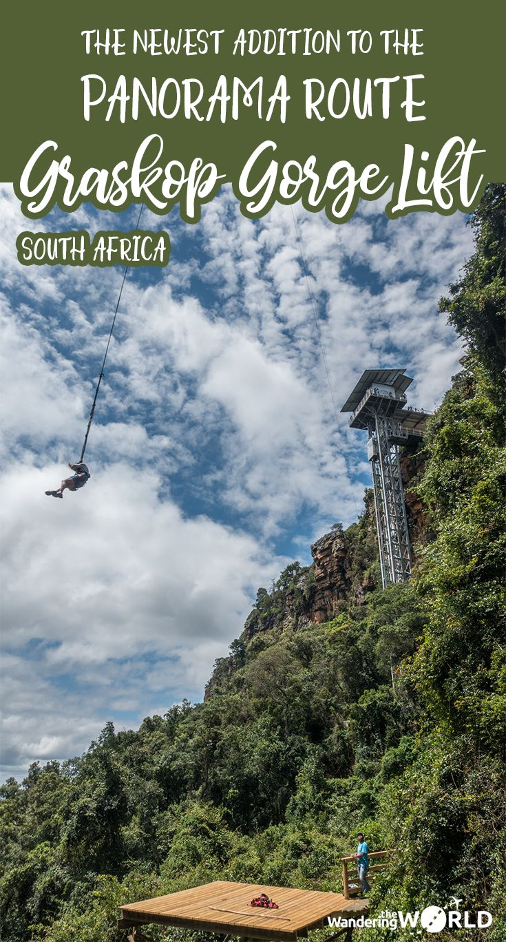 Head down the Graskop Gorge Lift for a nice walk in the forest - Click on the link to check out everything you need to know about the newest addition to the Panorama Route in South Africa - Wandering the World - #graskopgorge #panoramaroute #southafrica