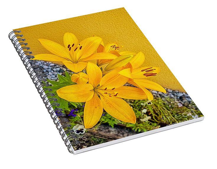 Daylily Spiral Notebook for Sale by Norman Gabitzsch