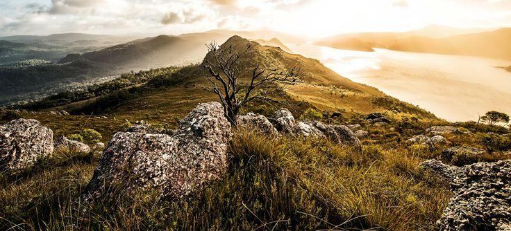 mount farrell tullah west coast tasmania australia