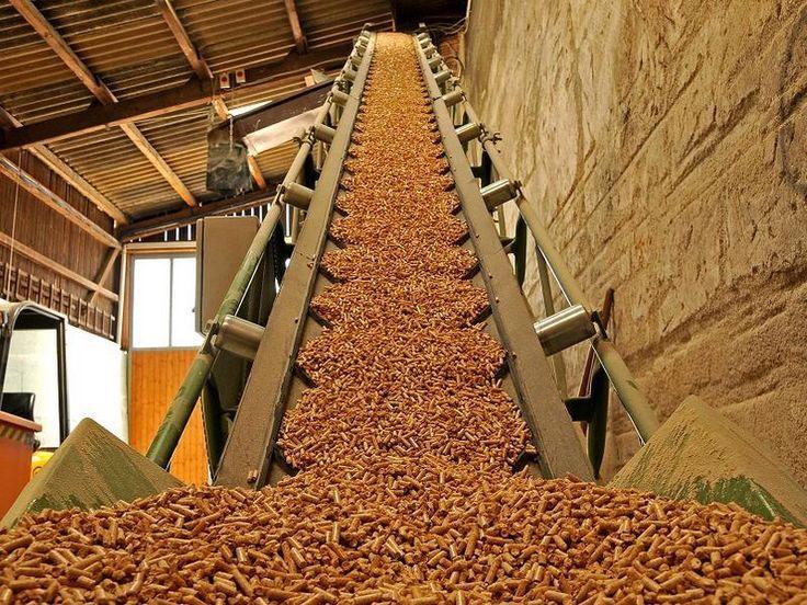 Energia da biomasse solide, ecco Cofely, Dister e Fusine