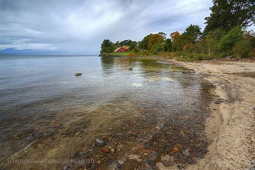 Aguas transparentes en Puntilla Nilque - Lago Puyehue (Patagonia - Chile)