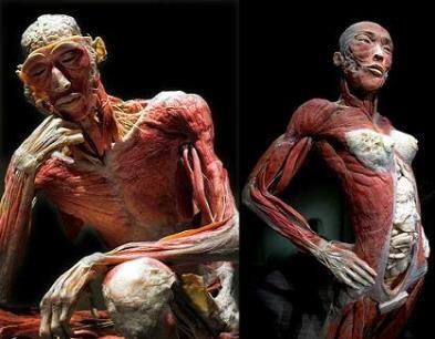 la fábrica del cuerpo en nuestros días (sobre el tráfico de organos, los experimentos en humanos y las consecuencias de ello)