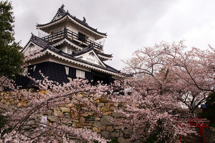 Hamamatsu Castle was the headquarter of the famous Tokugawa Ieyasu for 17 years and is also a popular cherry blossom viewing spot in spring.