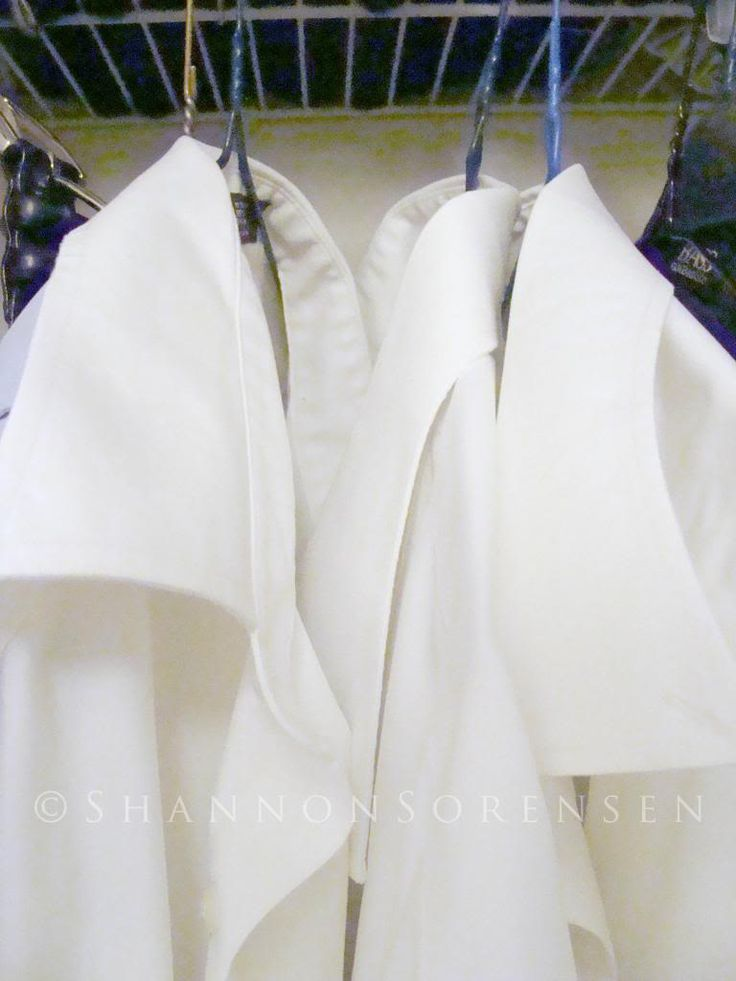 Hydrogen Peroxide Stains And Collars On Pinterest