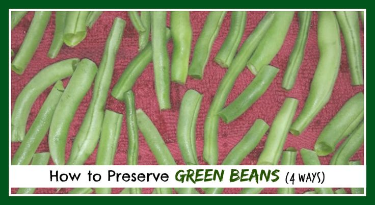 Learn how to preserve green beans. There are many ways to preserve your harvest of beans, but here are the four most common ways to preserve them. Enjoy!
