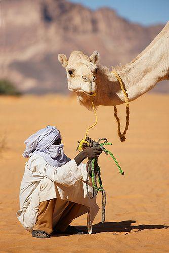 Man crouches before pale camel. Sahara Desert - People of #Morocco - Maroc Désert Expérience tours http://www.marocdesertexperience.com