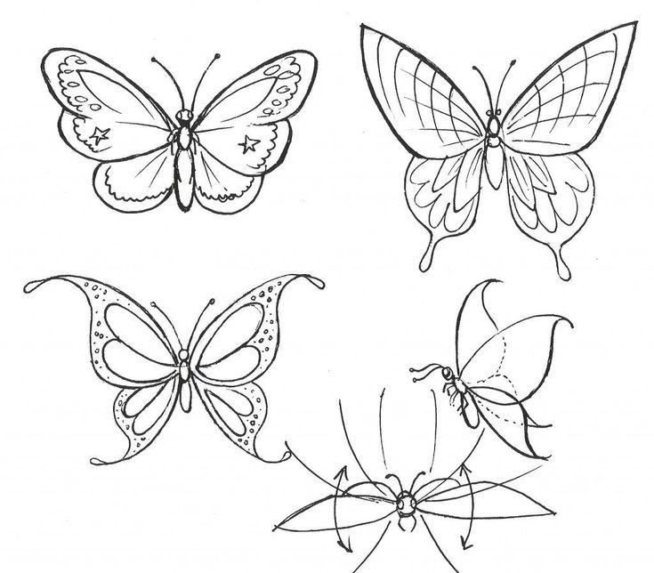 How To Make Butterfly Drawing Step By Step Easy Drawing ...