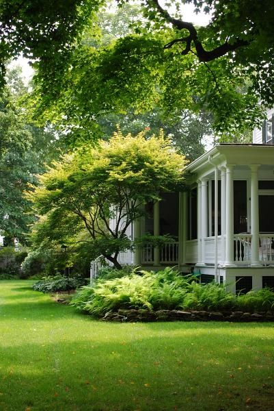 Beautiful home with shade garden | Lush green fern garden with rock border