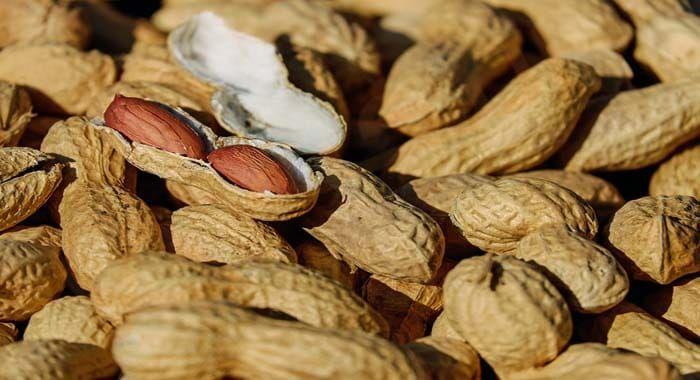 تفسير حلم رؤية الفول السوداني في المنام رمز أكل السوداني في الحلم للعزباء والمتزوجة والحامل دلالات السوداني ال Snacks Low Glycemic Foods Whole Wheat Crackers
