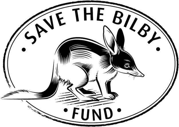 how to draw a bilby