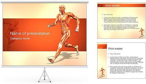 Sistema muscular Plantillas de Presentaciones PowerPoint