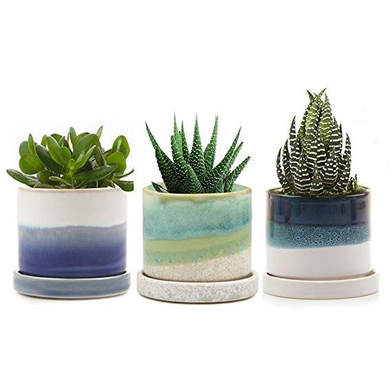 Chive Modern Round Succulent And Cactus Planter Pot With Drainage Hole And Saucer Small Contemporary Ceram Succulent Planter Painted Plant Pots Chives Plant