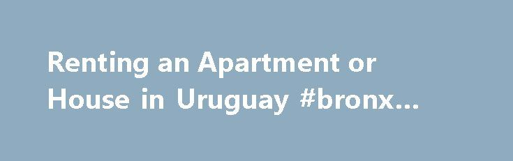 Renting an Apartment or House in Uruguay #bronx #real #estate http://remmont.com/renting-an-apartment-or-house-in-uruguay-bronx-real-estate/  #uruguay real estate # South America Living Renting an Apartment or House in Uruguay Rental House Converted Into a Hostal in La Paloma Depending on where you are looking and when, it can be easy or difficult to rent an apartment or house in Uruguay. Some locations such as the larger metropolitan areas Montevideo and Salto will have an abundance of…