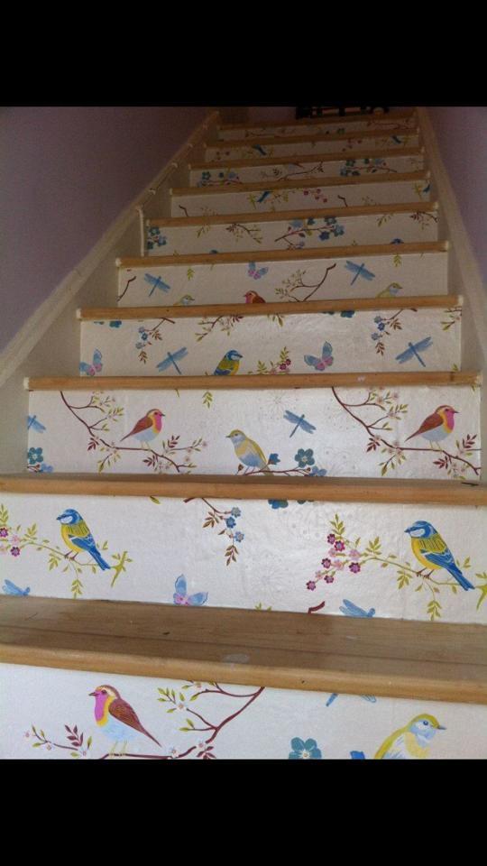 Early Bird by Pip Wallpaper  Wallpaperdirect