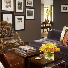 awesome leopard and gold chair! really sets this room off...like the photos with white mats and black frames on the gray wall too.