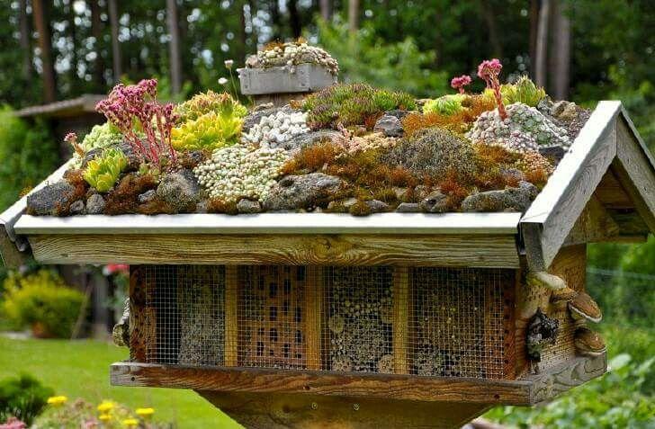 Bijenhotel met groendak