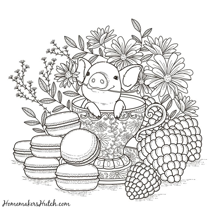 pig in a tea cup adult coloring page