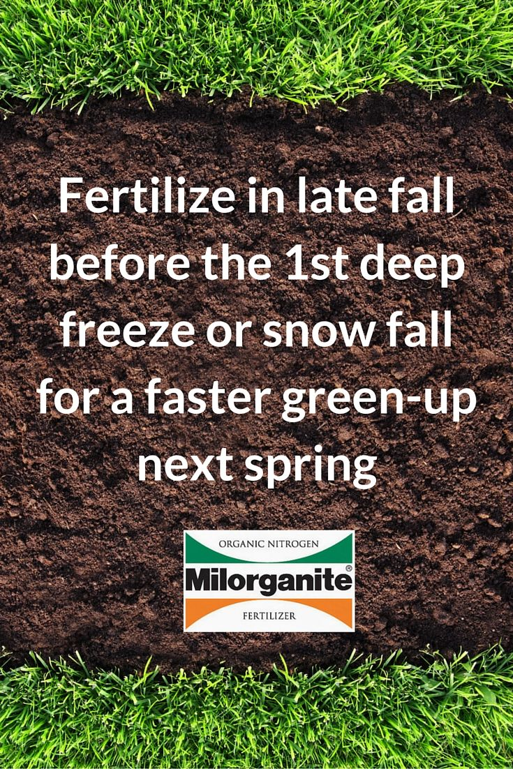 If you only fertilize your lawn once a year, fall is the best and most important time. Northern grasses, fertilize as late in the season as possible before the 1st deep freeze or snow fall.  http://www.milorganite.com/Lawn-Care/Lawn-Care-Tools/Application-Rates