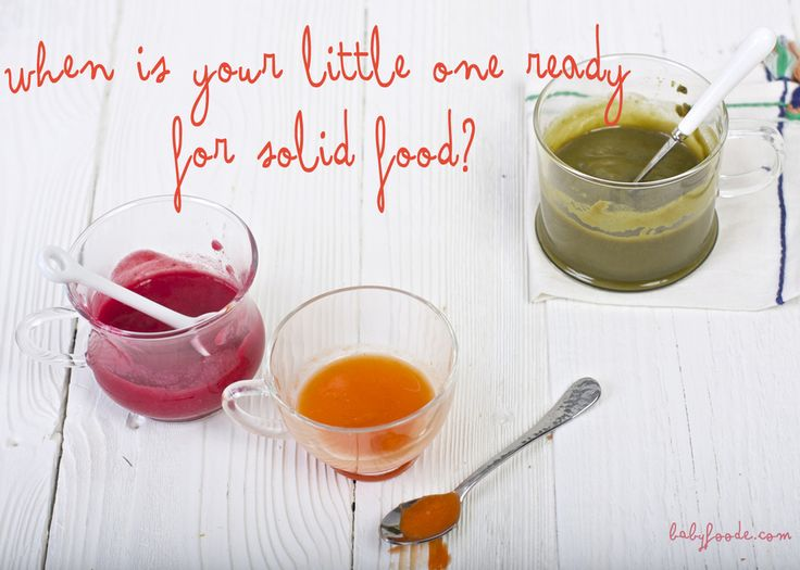 When to Start Feeding Your Little One Solid Food
