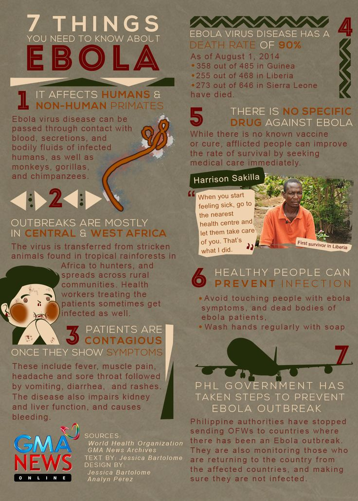 INFOGRAPHIC: 7 things Filipinos should know about the Ebola virus | News | GMA News Online