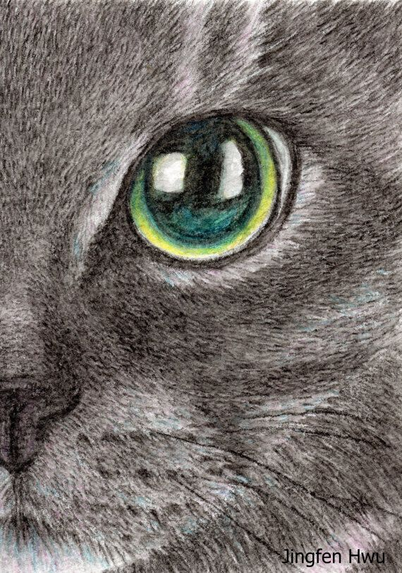 cat drawing OOAK a black cat by Jingfen Hwu, lifelike, realistic, art, green eyes, cat face, aqua color pencil, watercolor, #jingfenhwu