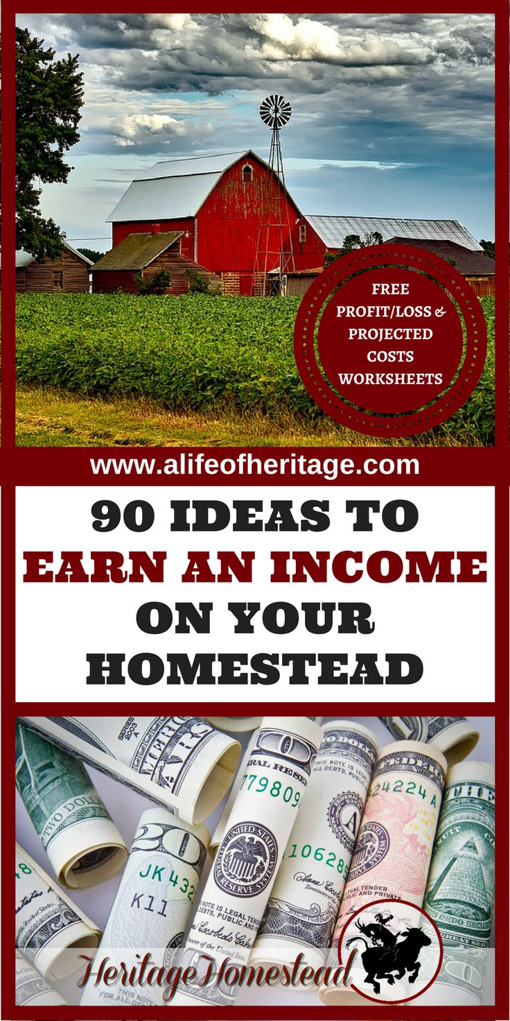 Homesteading   Making money on a Homestead   Earn an income homesteading   Homesteading income   Money making homestead   FREE PROFIT/LOSS & PROJECTED COSTS WORKSHEETS. What does it take to profit homesteading? Over 90 ideas to get you started!