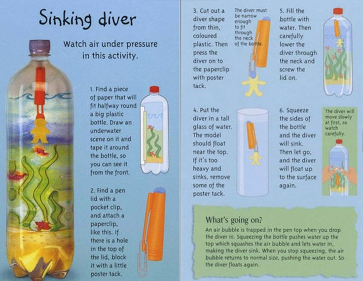 cartesian diver essay Making a cartesian diver toy abstract: the purpose of this activity is to construct a cartesian diver device illustrating the concept described by boyle's law , so that a theory may be constructed explaining how the.