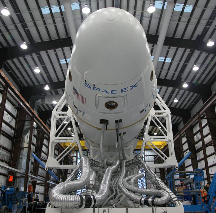 spaceX dragon launch  Elon Musk is the Hott