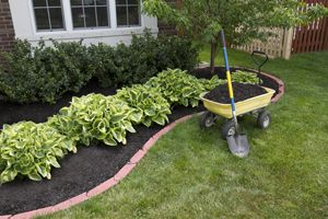 Inexpensive Landscaping Ideas | Like the picture here how they have a