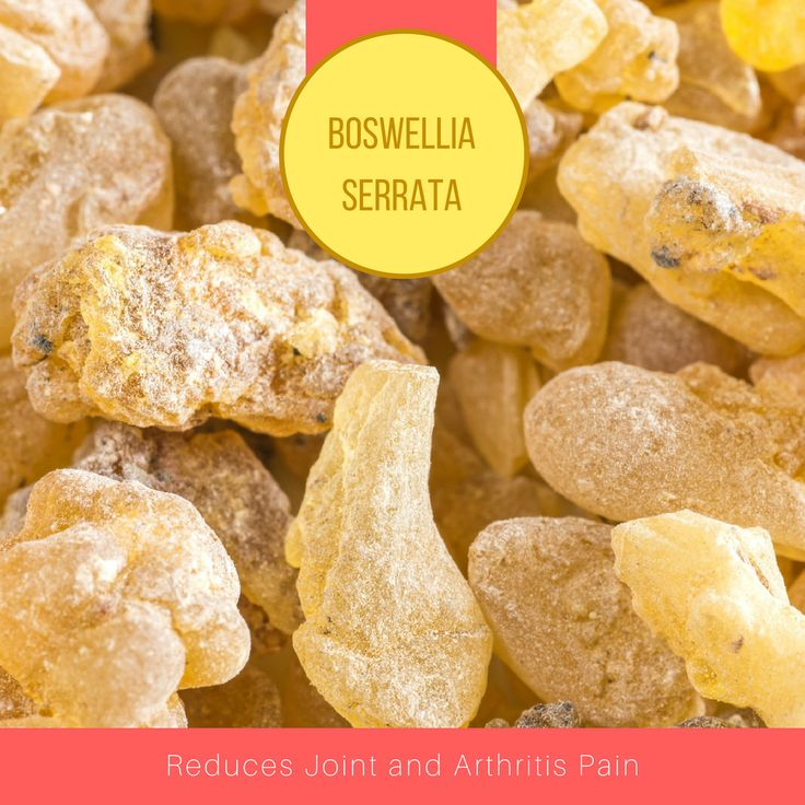 The boswellia serrata extract, according to a study published in the Natural Medicines Comprehensive Database, has demonstrated that it can help reduce pain, swelling and trouble moving in people who have arthritis or osteoarthritis and other forms of inflamed joints.   #USimplySeason #spices #BoswelliaSerrata  Source: Dr Axe