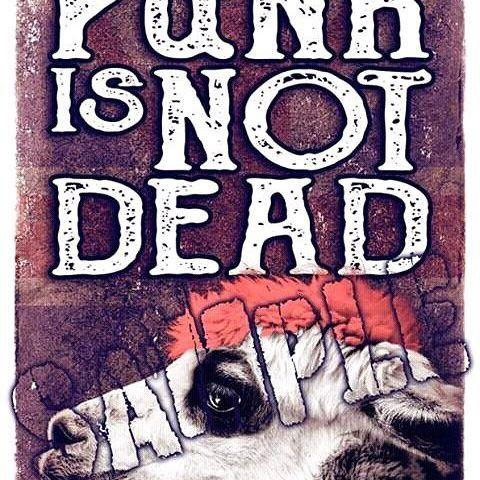 Punk Is Not Dead  #digitalart #animals #sureal #punk